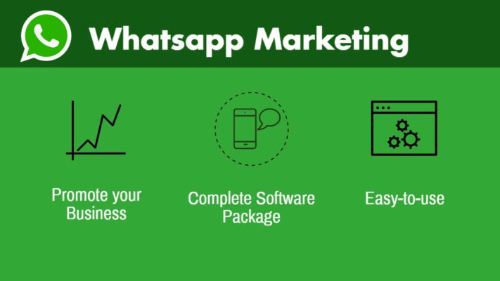 whatsapp marketing mtalkz